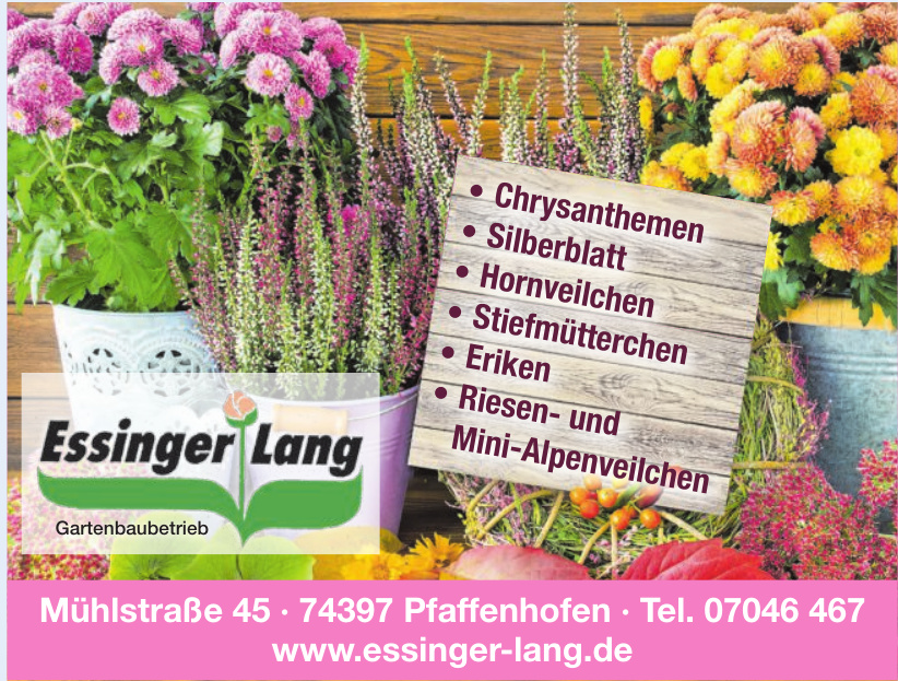 Essinger und Lang