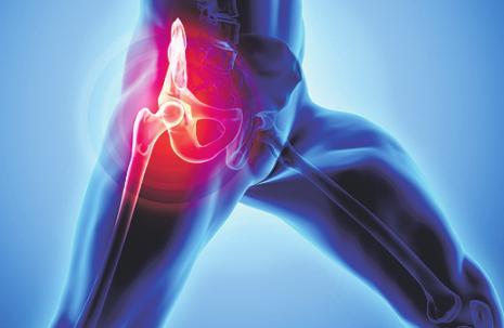 An komplexen Bewegungen beteiligt: der Musculus iliopsoas. Foto: yodiyim/ stock.adobe.com