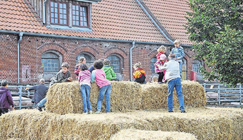 Während der Landpartie können Kinder und Erwachsene den Ökohof Kuhhorst erleben. FOTO: KATJA STEIN/MOSAIK