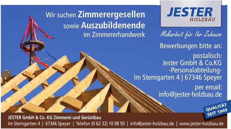 Jester GmbH & Co KG Zimmerei und Gerüstbau