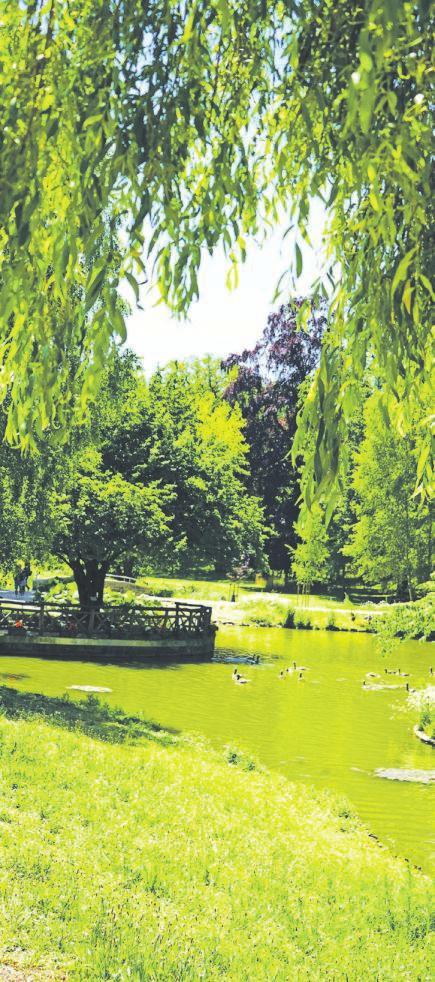 03 Der weitreichende und übersichtlich angelegte Kurpark begeistert mit herrlichen Einblicken in die Natur.