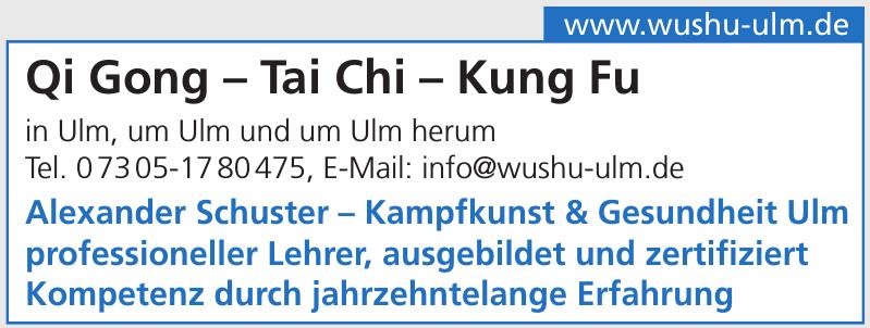 Qi Gong – Tai Chi – Kung Fu Kurse in Ulm