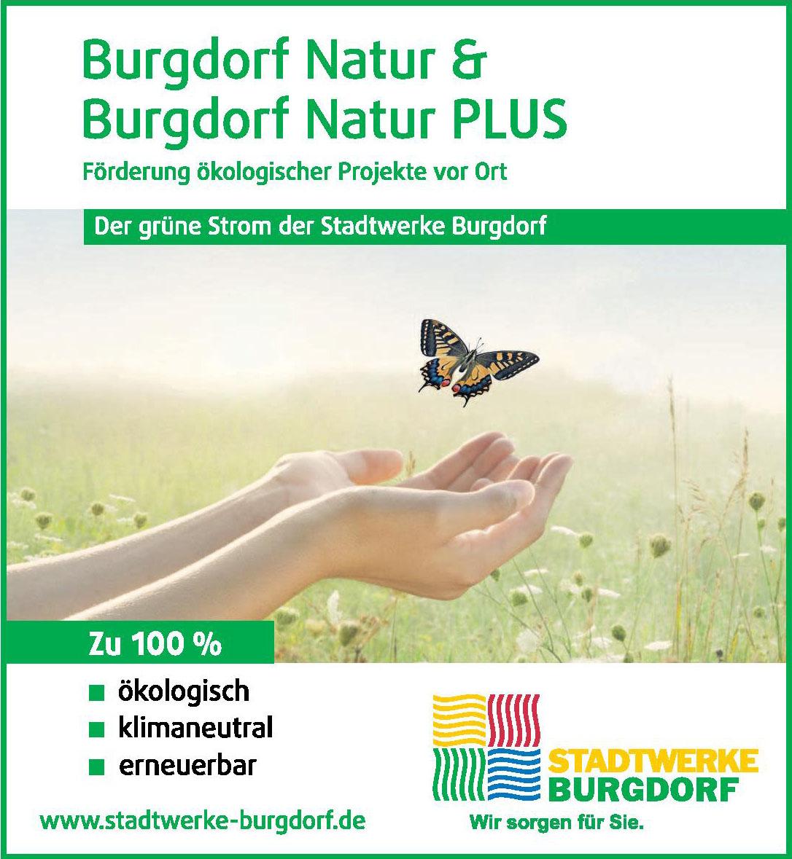 Stadtwerke Burgdorf GmbH