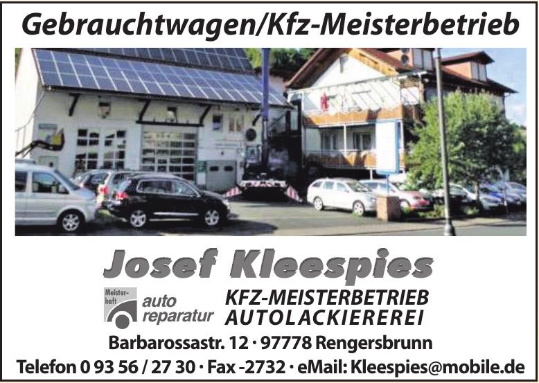 Josef Kleespies Kfz-Meisterbetrieb Autolackiererei