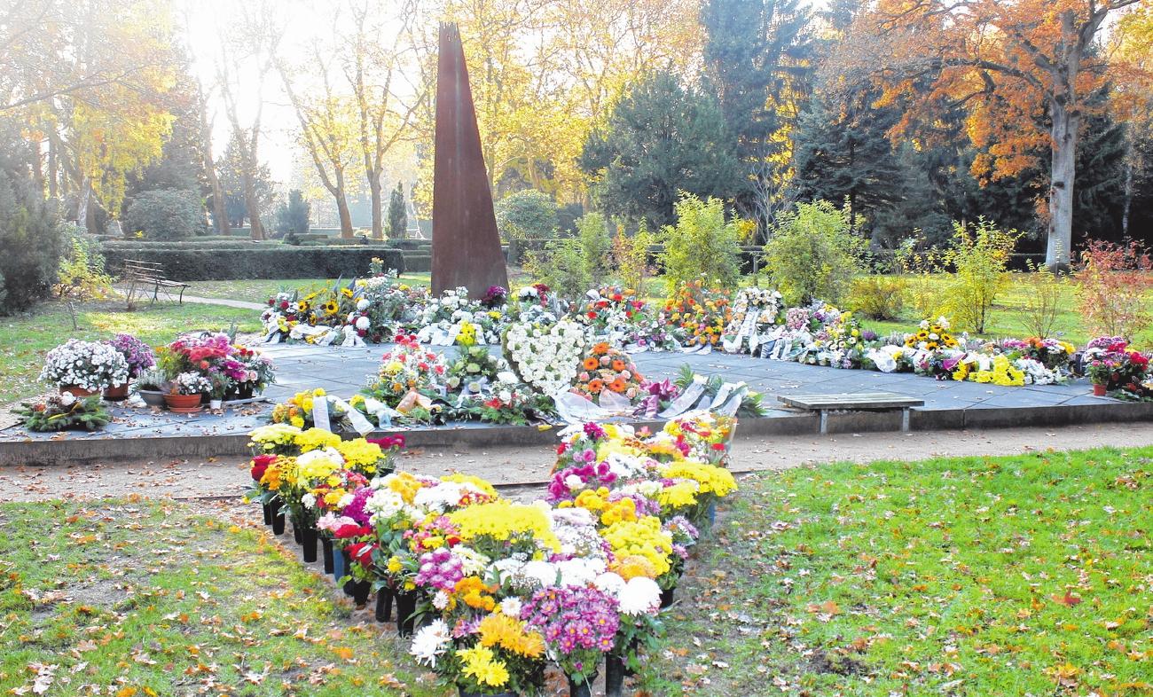 Anonyme Bestattungen, wie hier auf dem Neuen Friedhof in Greifswald, nehmen an Bedeutung zu.