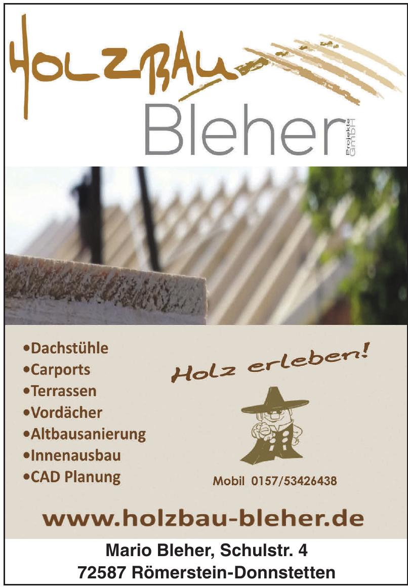 Holzbau Bleher