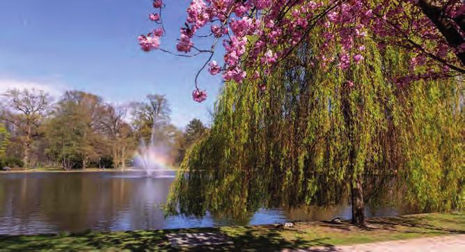 Der Französische Garten in Celle.