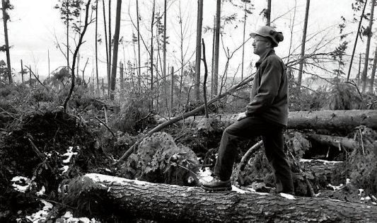 und nach dem Orkan Lothar mit Förster Joachim Kern bei der Begutachtung der Schäden in Bästenhardt (u.). Archivbilder: Klaus Franke