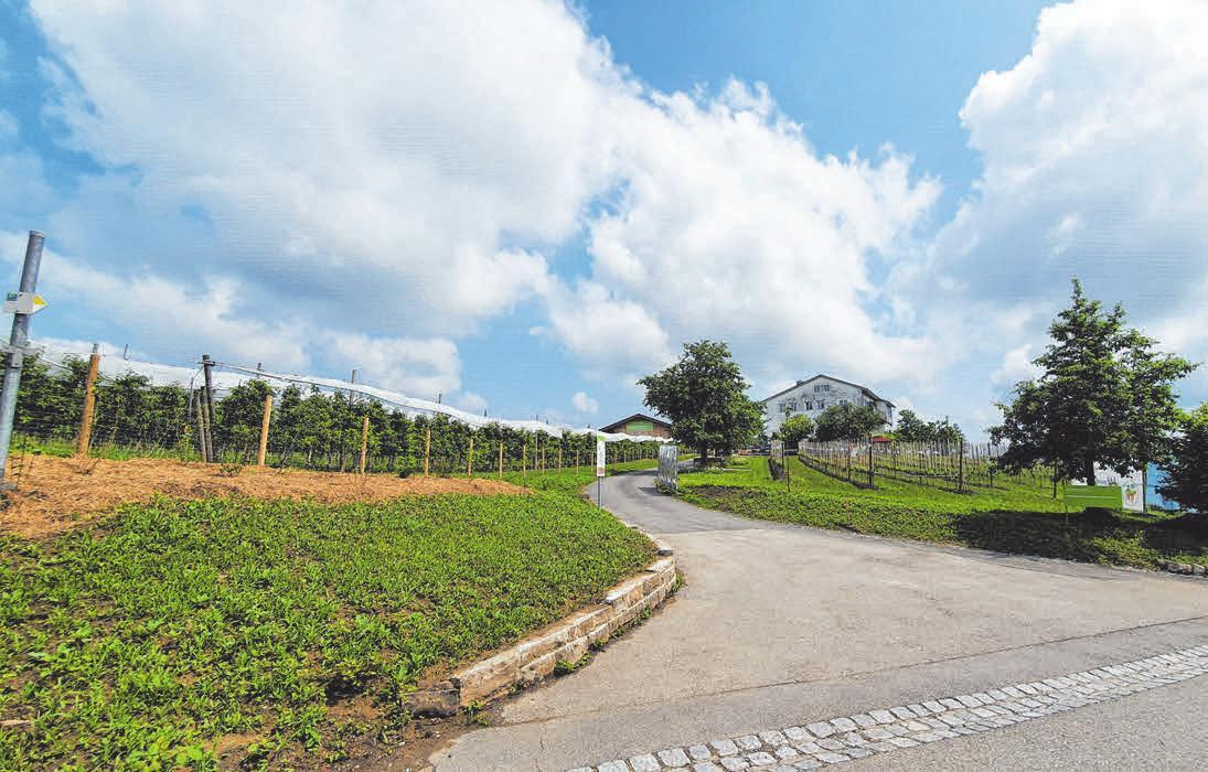 Die Versuchsstation für Obstbau in Schlachters ist Satellitenstandort der Gartenschau: Bis Ende Oktober finden dort Vorträge und Workshops zu Obstbauthemen sowie Führungen über das Gelände statt.