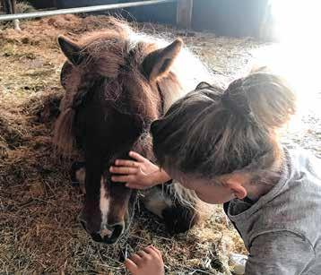 Auf dem Ponyhof Lutz kommen Mensch und Tier einander näher.