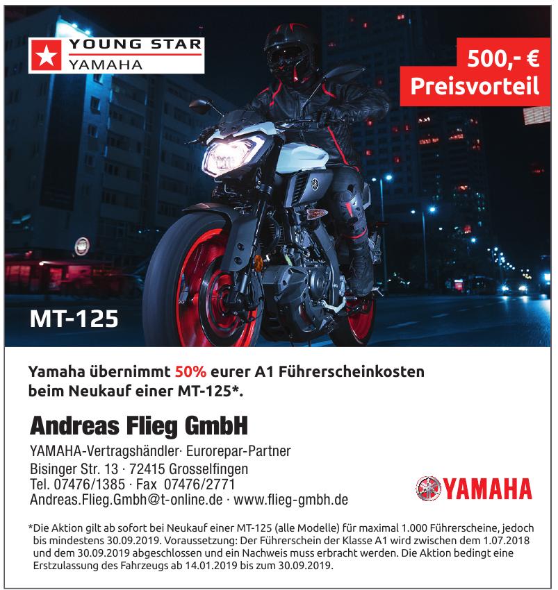 Andreas Flieg GmbH