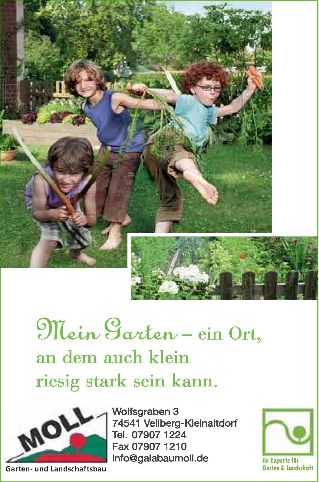 Moll Garten- und Landschaftsbau