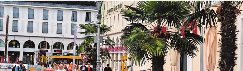 Vom Marktplatz aus geht es in die Kaiserstraße mit all ihren Seitenstraßen. Foto: tkn