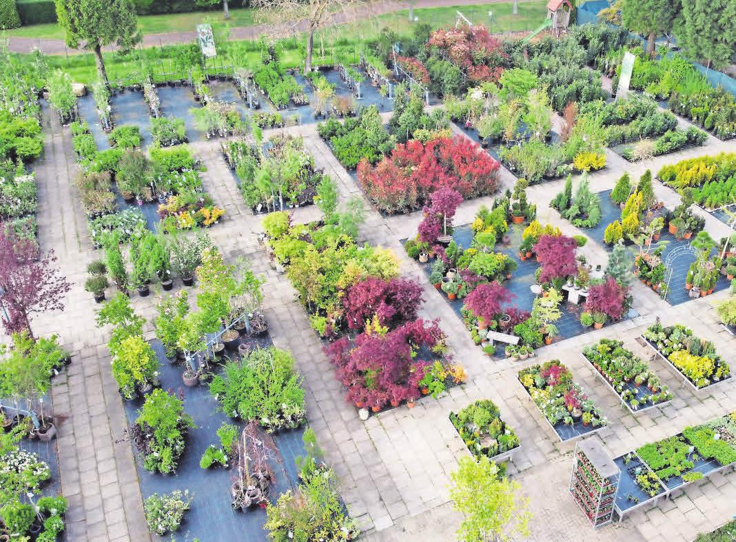 Das Freigelände im Gartencenter Klipphahn lädt zum Stöbern ein.