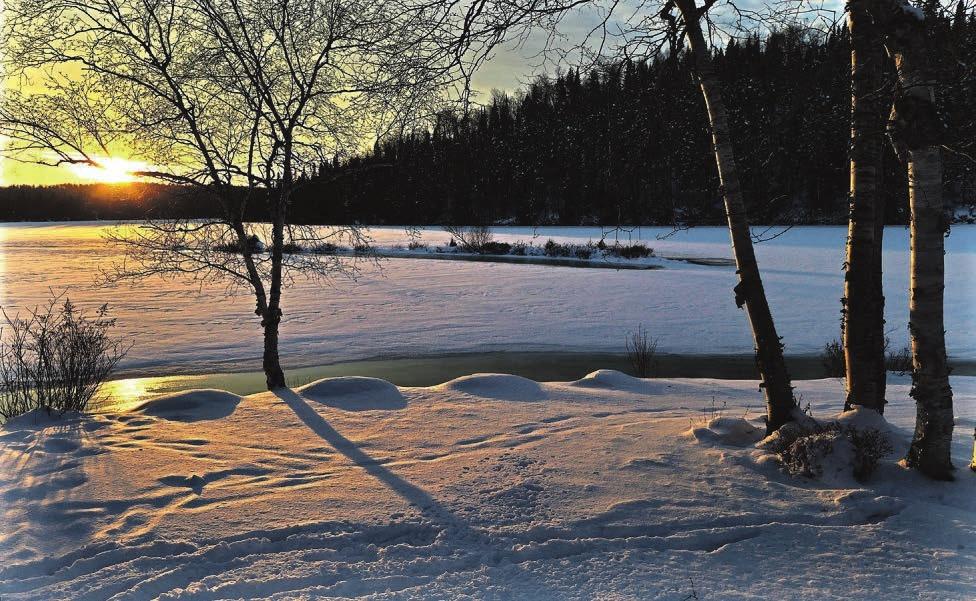 Die Chance auf eine winterliche Weihnacht liegt in Norddeutschland bei 20 Prozent Fotos: pixabay
