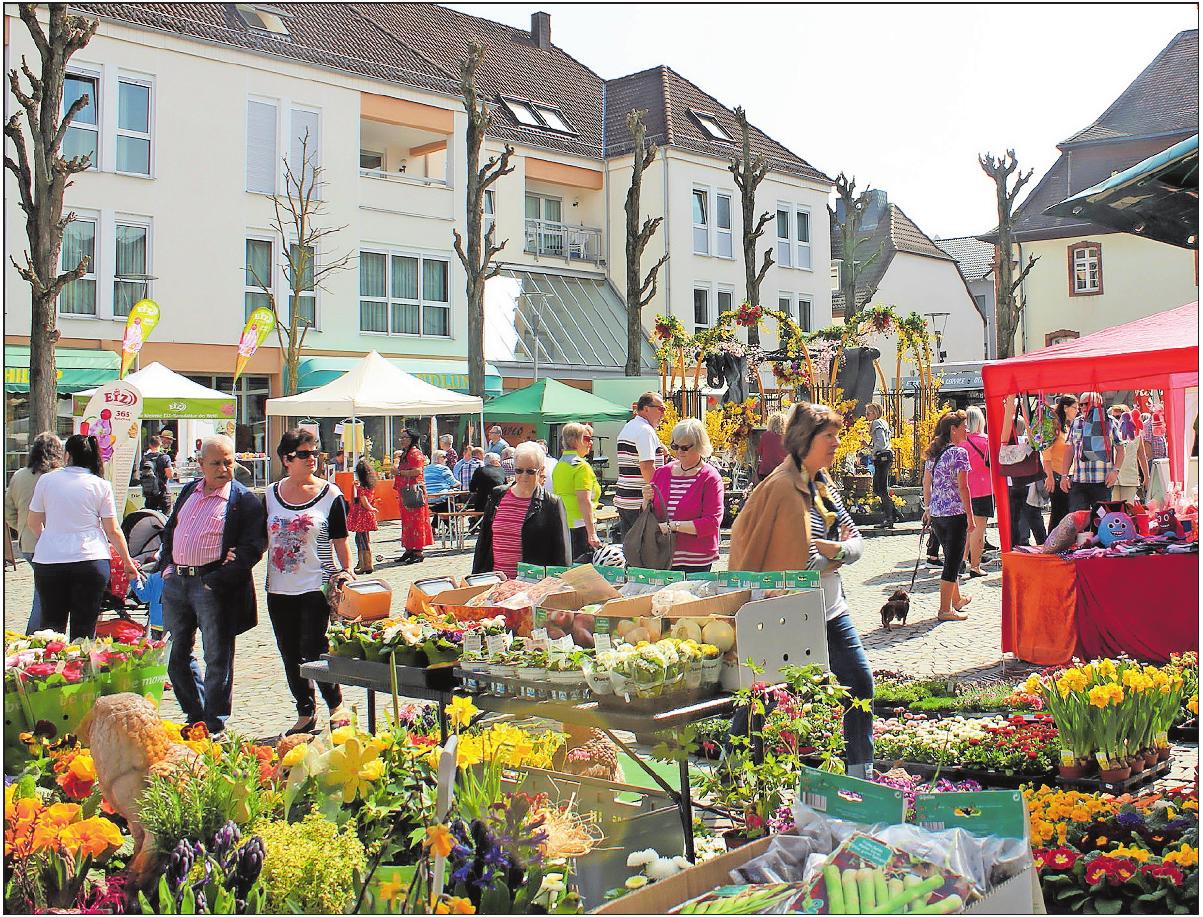 Bunte Vielfalt rund um den Marktbrunnen