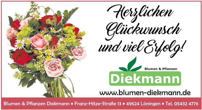 Blumen & Pflanzen Diekmann