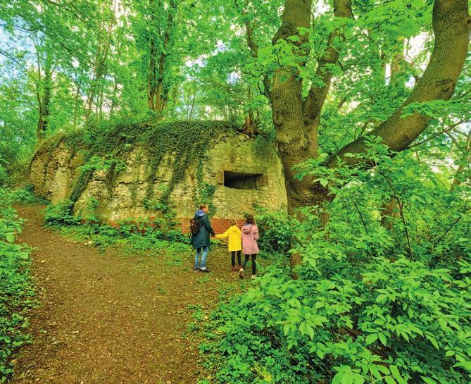 Die Ruinen der Feste Calenberg sind einen Besuch wert. Foto: HMTG, C. Wyrwa