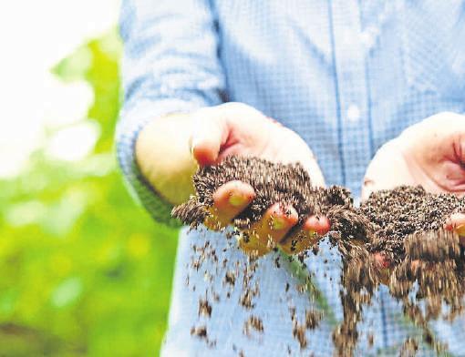 Mit den passenden Produkten lassen sich Sand, Humus, Nährstoffe und natürliche Bodenorganismen in nur einem Arbeitsgang ausbringen. Foto: djd/Floragard Vertriebs-GmbH