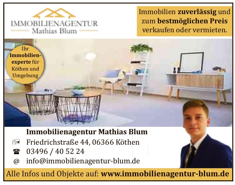Immobilienagentur Mathias Blum