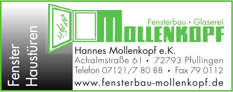 Hannes Mollenkopf e.K.