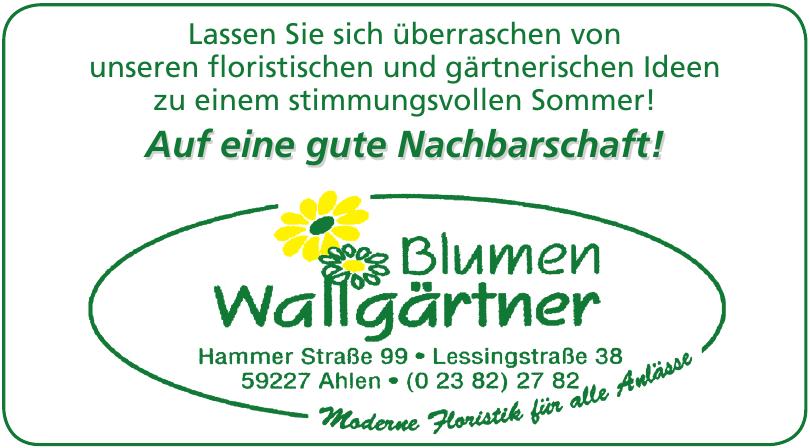 Blumen Wallgärtner