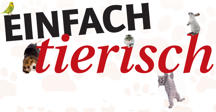 Infektions-Meldepflicht für Haustiere Image 1