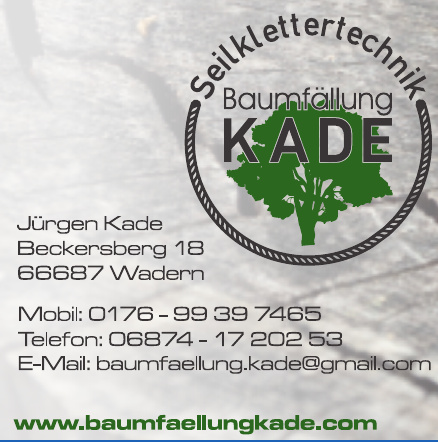 Seilklettertechnik Baumfällung Kade