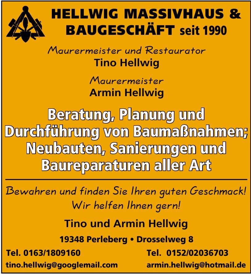 Tino und Armin Hellwig