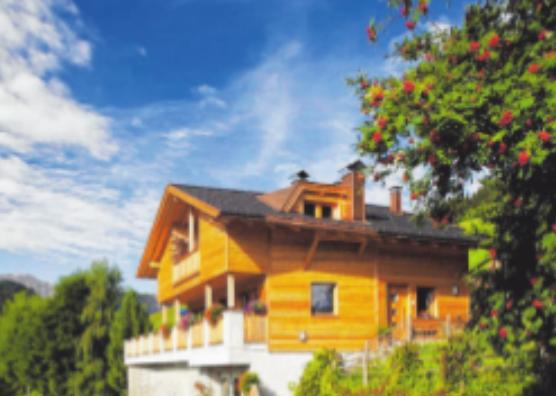 Gesundheitsbewusstes Bauen mit Holz Image 3